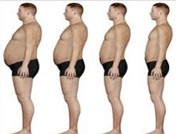 Steady state fat burning picture 4